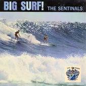 Big Surf de The Sentinals