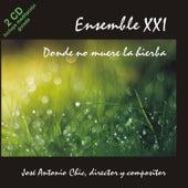 Donde No Muere la Hierba by Ensemble XXI