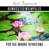 Bewusstseinsimpulse für die wahre Berufung by Kurt Tepperwein