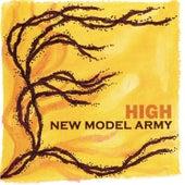 High de New Model Army