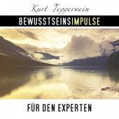 Bewusstseinsimpulse für den Experten by Kurt Tepperwein