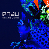 Chameleon by Pnau