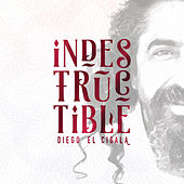 Indestructible: Track by Track by Diego El Cigala