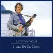 Shake 'em On Down by Lightnin' Wells