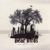 Dear Birds by Low In The Sky