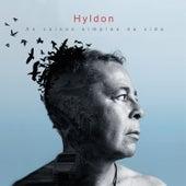 As Coisas Simples da Vida de Hyldon