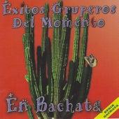 Exitos Gruperos del Momento en Bachata by Willy Castro
