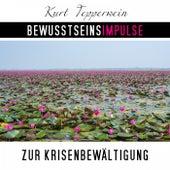 Bewusstseinsimpulse zur Krisenbewältigung by Kurt Tepperwein