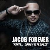 Ponte (Como A Ti Te Gusta) von Jacob Forever