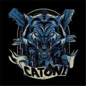 Lobo de Catoni