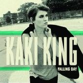 Falling Day by Kaki King
