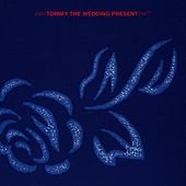 Tommy by The Wedding Present