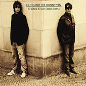 B-Sides and Live (2001 - 2005) by Echo and the Bunnymen