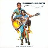 Friends on the Road de Bhundu Boys