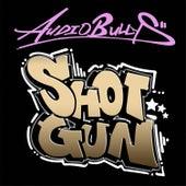Shotgun (Basher Remix) de Audio Bullys