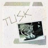 Tusk by Camper Van Beethoven