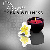 Pure Spa & Wellness – Sounds for Relaxation, Peaceful New Age Music for Spa, Soothing Melodies, Bliss Spa by S.P.A