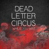 While You Wait de Dead Letter Circus