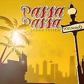 Passa Passa Sound System, Vol. 6 de Various Artists