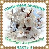 Солнечная Армения 5 by Various Artists