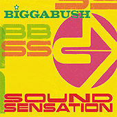 Bigga Bush Sound Sensation by Various Artists
