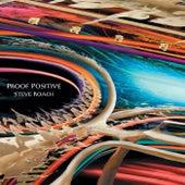 Proof Positive by Steve Roach