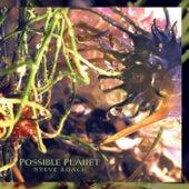 Possible Planet by Steve Roach