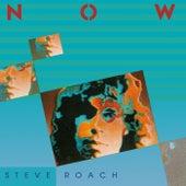 Now by Steve Roach