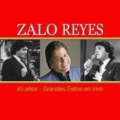 45 Años - Grandes Exitos en Vivo by Zalo Reyes