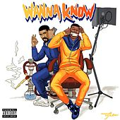 Wanna Know (feat. Drake) de Dave