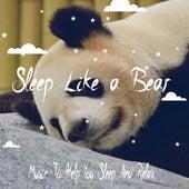 Sleep Like A Bear: Music To Help You Sleep And Relax by Sleep Sound Library