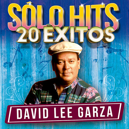 Sólo Hits by David Lee Garza
