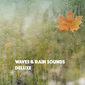 Waves & Rain Sounds Deluxe by Various Artists