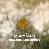 Collection for Relaxing Rain Sounds by Various Artists