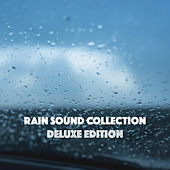 Rain Sound Collection Deluxe Edition by Various Artists