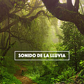 Sonido de la Lluvia by Various Artists
