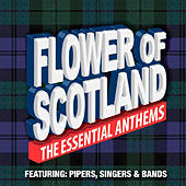 Flower of Scotland the Essential Anthems by Various Artists