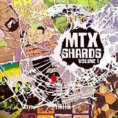 Shards, Vol. 1 by Mr. T Experience