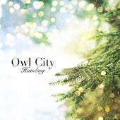 Humbug von Owl City