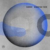 Awayaway / Weaver's Cave Remixes di Various Artists