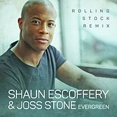 Evergreen (Rolling Stock Remix) de Joss Stone