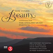 Now Comes Beauty by Various Artists