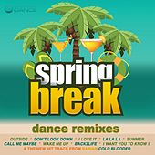 Spring Break Dance Remixes by Various Artists