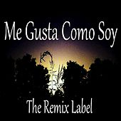 Me Gusta Como Soy von Various Artists
