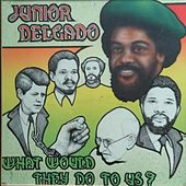 What Would They Do to Us? von Junior Delgado