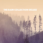 The Rain Collection Deluxe by Various Artists