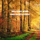 Relaxing Wind And Rain Sounds by Various Artists