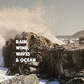 Rain, Wind, Waves & Ocean by Various Artists