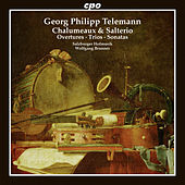 Telemann: Chalumeaux & Salterio by Various Artists