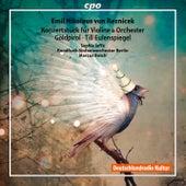 Reznicek: Orchestral Works de Various Artists